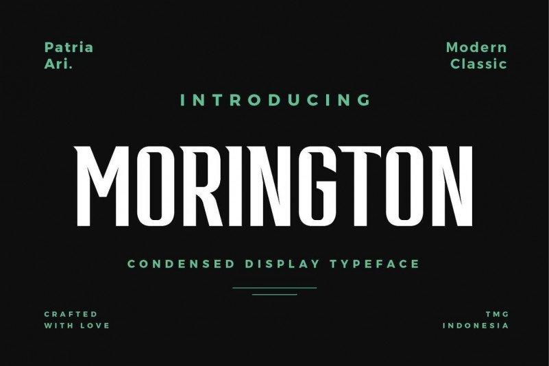 morington-4