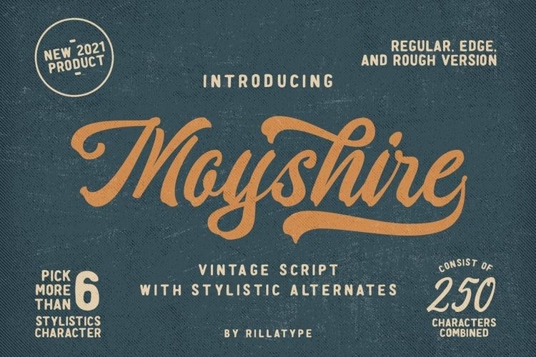 moyshire-4