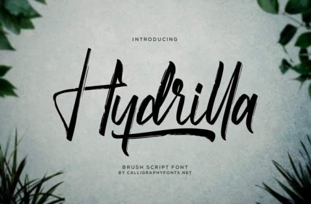 Hydrilla Textured Font