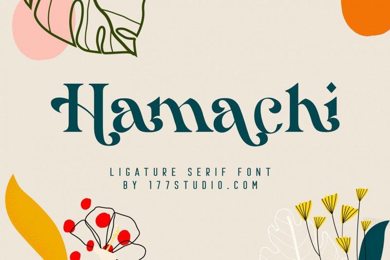 hamachi-serif-font