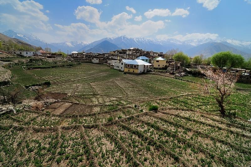 Farming at Nako Village