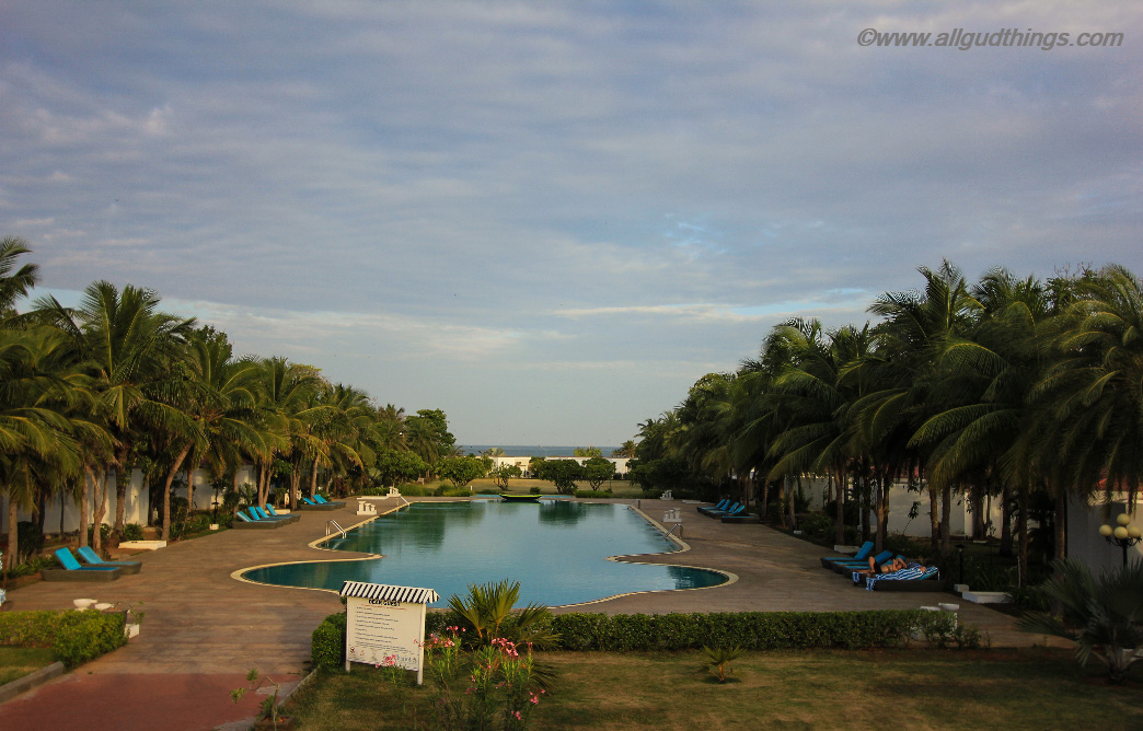 Olympiad Size Swimming Pool at Chariot Beach Resort Mahabalipuram