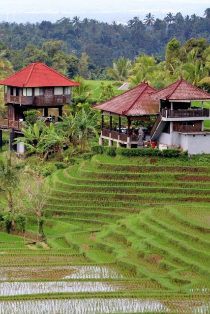 Bali In Indonesia Best All Inclusive Honeymoon Destinations