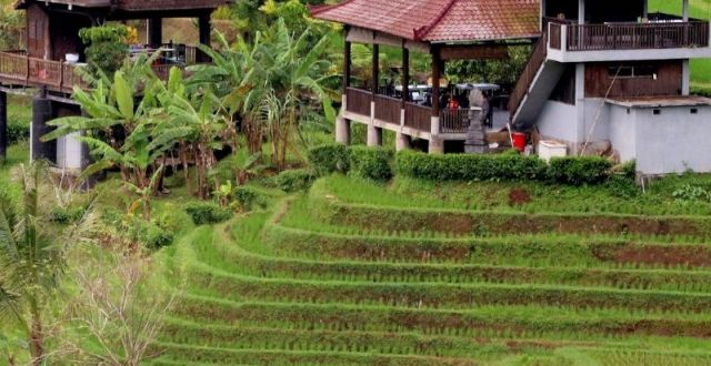 Exotic Honeymoon Destinations All Inclusive: Bali In Indonesia Best All Inclusive Honeymoon