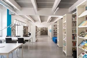 bibliothèque-article-Microsoft