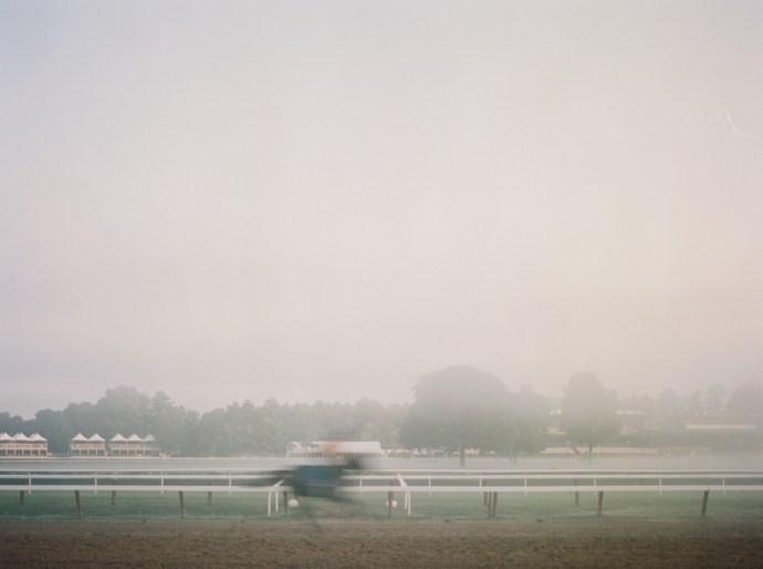 saratoga-race-track-thoroughbred-horses-equine-photography-33