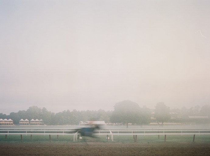 saratoga-race-track-thoroughbred-horses-equine-photography-33