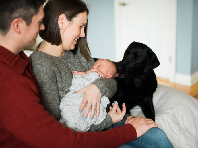 family-photography-lifestyle-newborn-dog-in-home-allie-jennings-photo-19