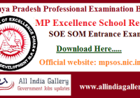 MP Excellence School Result