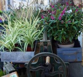 Blomsterbutikken16-03