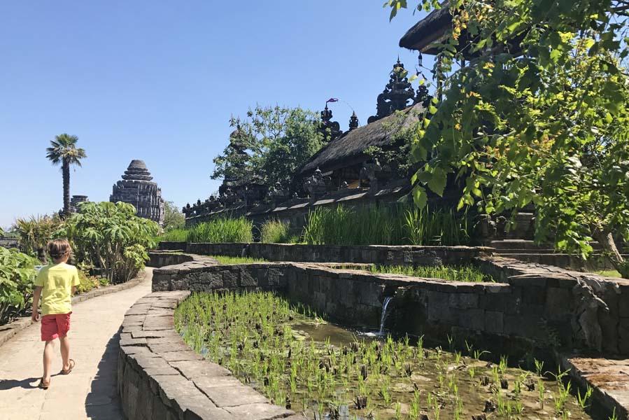 Wandelen langs de rijstvelden in koninkrijk van Ganesha - Pairi Daiza - AllinMam.com