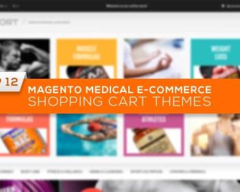 E-commerce Shopping Cart Themes