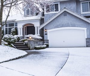 NPMA's Winter Pest Forecast - Brace Yourself for More of Every Pest!