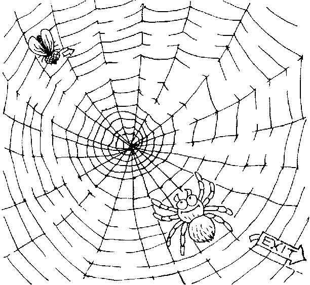 printable print your medium spiderweb puzzle all kids