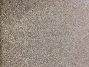 Carpet sale heavy plush tweed carpet