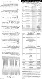 sialkot district jobs