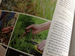 The English Garden Magazine Review