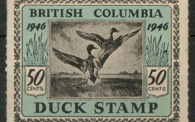 British Columbia #BCD1 1946 50c Duck first issue