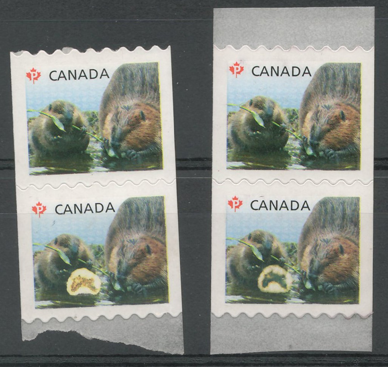 Two sets of 2 stamps from coil each with 2 gnawing beavers, one with variety