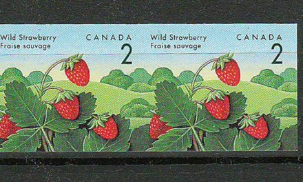 Canada #1350a VFNH 1992 2c Strawberry Imperforate Pair