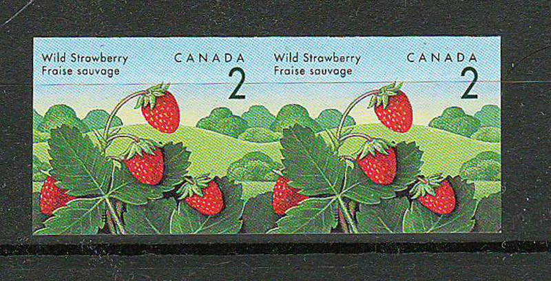 strawberry stamps