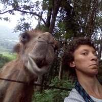 Edmée, en route avec une chamelle