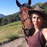 Lise jusqu'aux sommets des volcans d'Auvergne