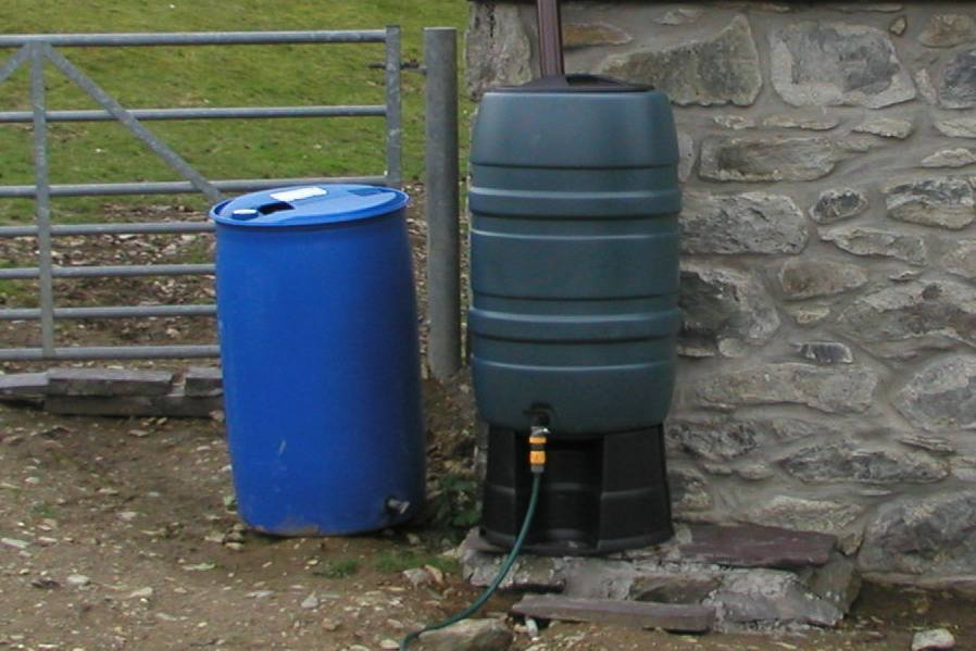 Controlling Insects Amp Mosquitoes In Water Butts