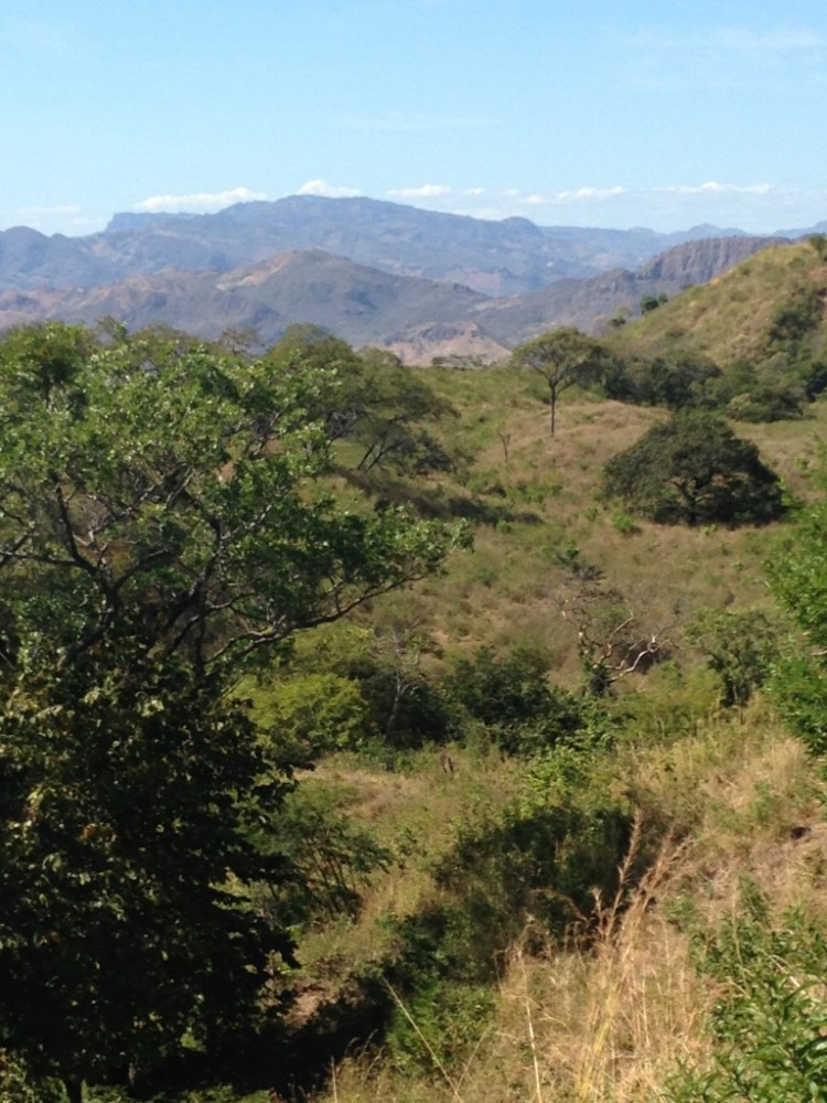 Nothing but bush and hills and a big sky. It's how I will remember Honduras.