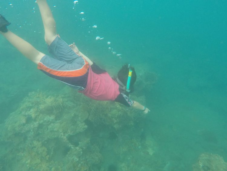 J was very excited to be snorkeling. Here, he points to a major discovery.