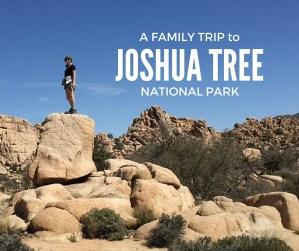 A family trip to Joshua Tree National Park article by Karen Schwarz