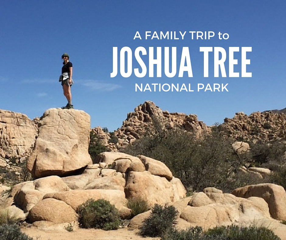 A family trip to Joshua Tree National Park article by Karen Schwarz