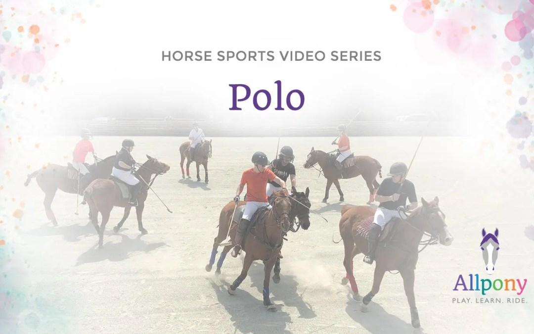 Allpony Horsemanship Video Series – Polo