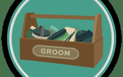 Grooming Tools Quiz