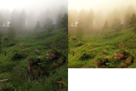 Bild direkt aus dem iPhone und nach der Bearbeitung mit Snapseed