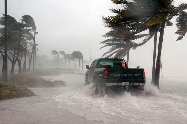 how to volunteer: puerto rico needs your help