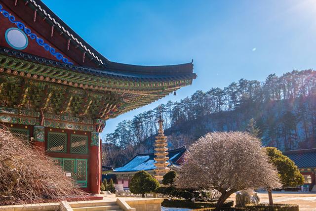 Woljeongsa Temple Winter games