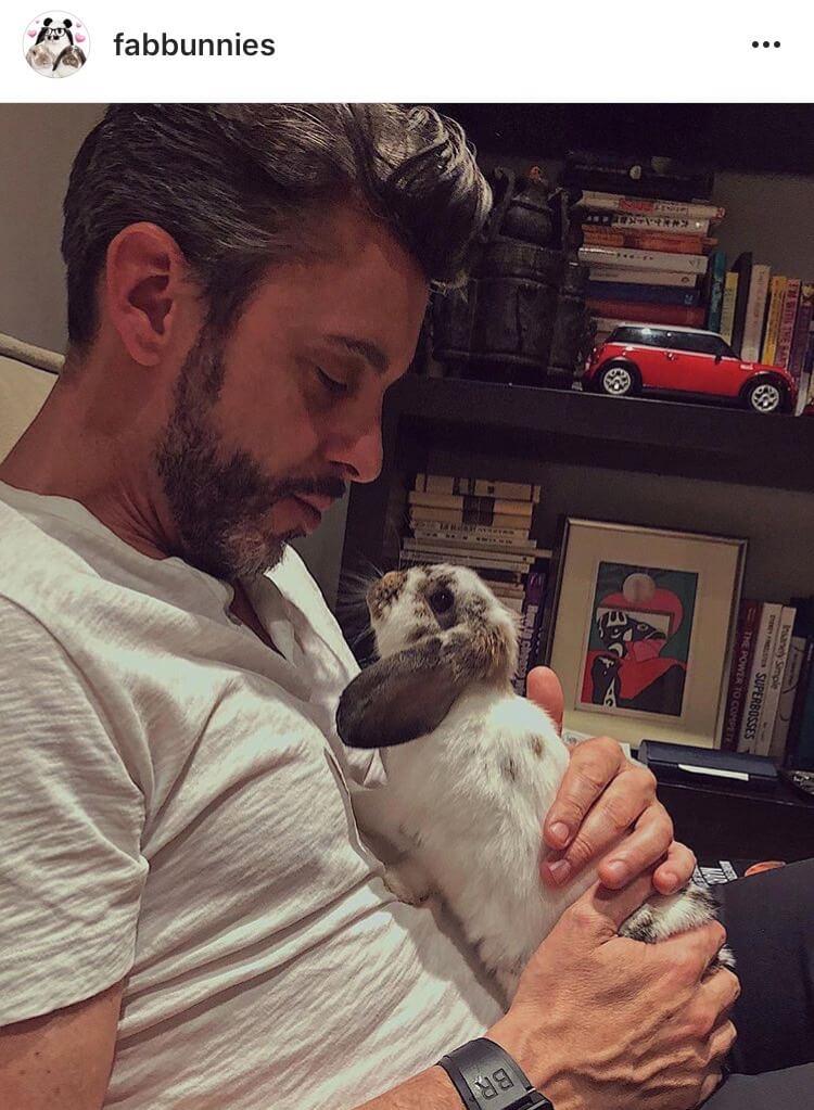 living with a bunny advisor
