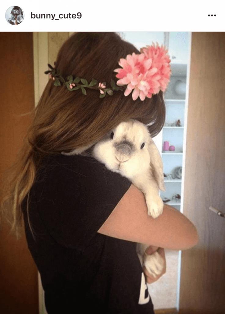 bunny mum bunny mama bunny mummy allthestufficareabout 1