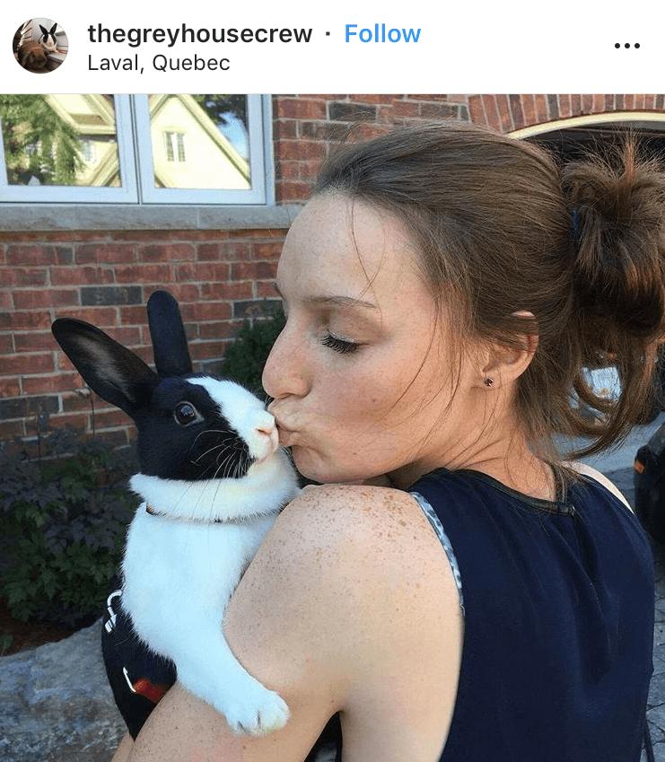 bunny mum bunny mama bunny mummy allthestufficareabout thegreyhousecrew