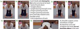 Wrist Mobility, Bodyline Exercises, Handstands Guide