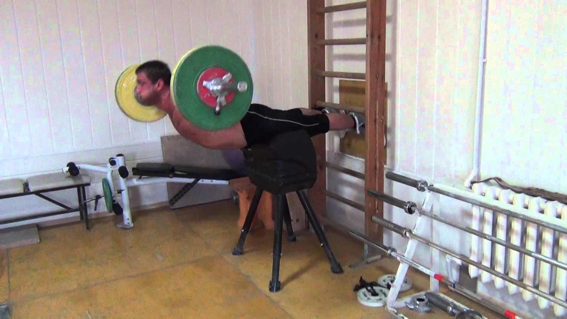 Dmitry Klokov Back Hyperextensions *Update* - All Things Gym