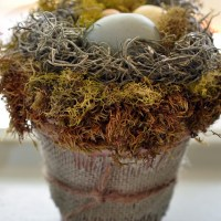 Bird Nests in Flower Pots~ Little Spring Project