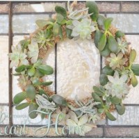 Live Wreath Made with Succulents