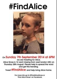 Find Alice Gross appeal