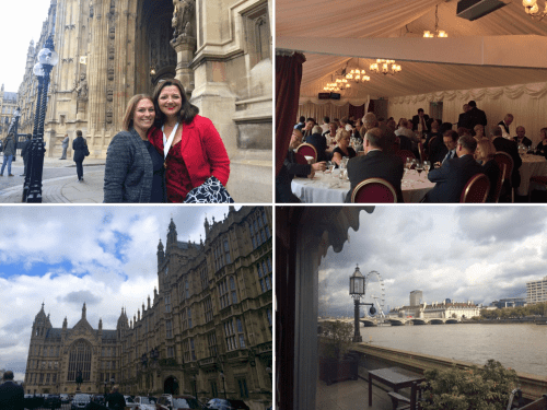 CIPR_Fellowslunch2015