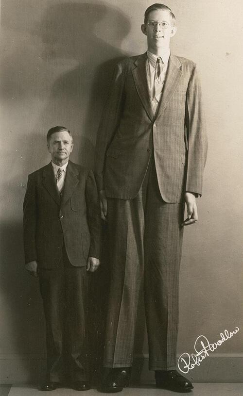robert wadlow - tallest person in history