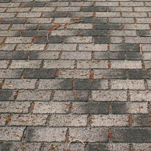 damage shingles