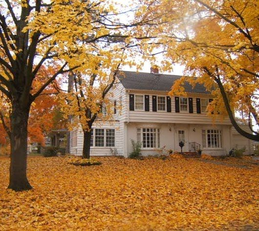 A white house in the middle of a trees with orange leaves