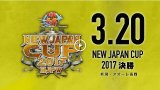 Watch NJPW New Japan Cup 2017 Finals Full Show Online Free